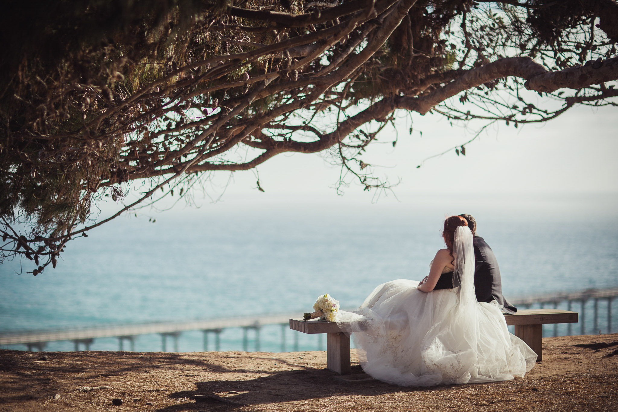 San Diego Wedding Photographer Martin Johnson House Wedding Cliffs ...